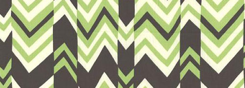 Amy Butler's Ritzy Stripe Fabric