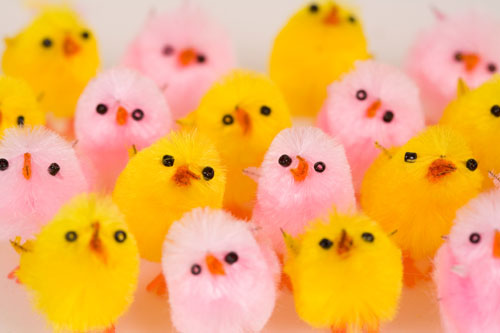 Pink and Yellow Easter Chicks