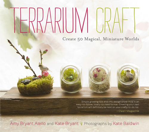terrariumSearch ResultsMaking it Lovely