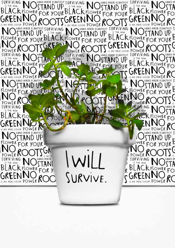 I Will Survive.