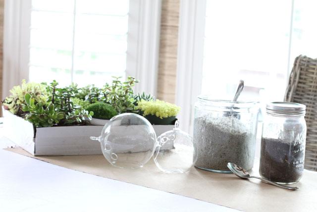 how to make a succulent terrarium youtube