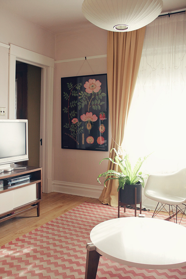 Dog Rose Botanical Poster in the Living Room