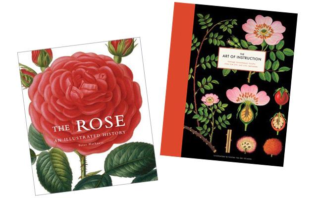 Scientific Botanical Prints Making It Lovely