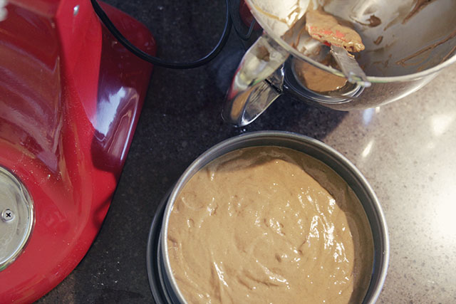 Gingerbread Cake Batter