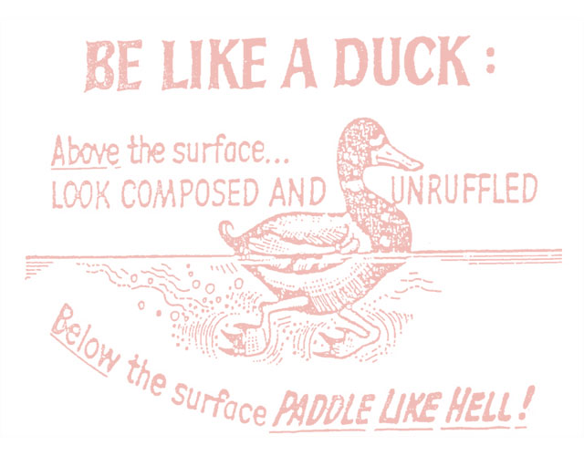 Be Like a Duck