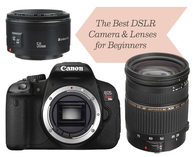 beginners top 5 digital slr cameras for beginners in 2013 best dslr