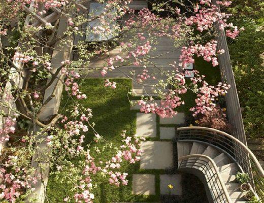 Jenny Lyons' Former Garden