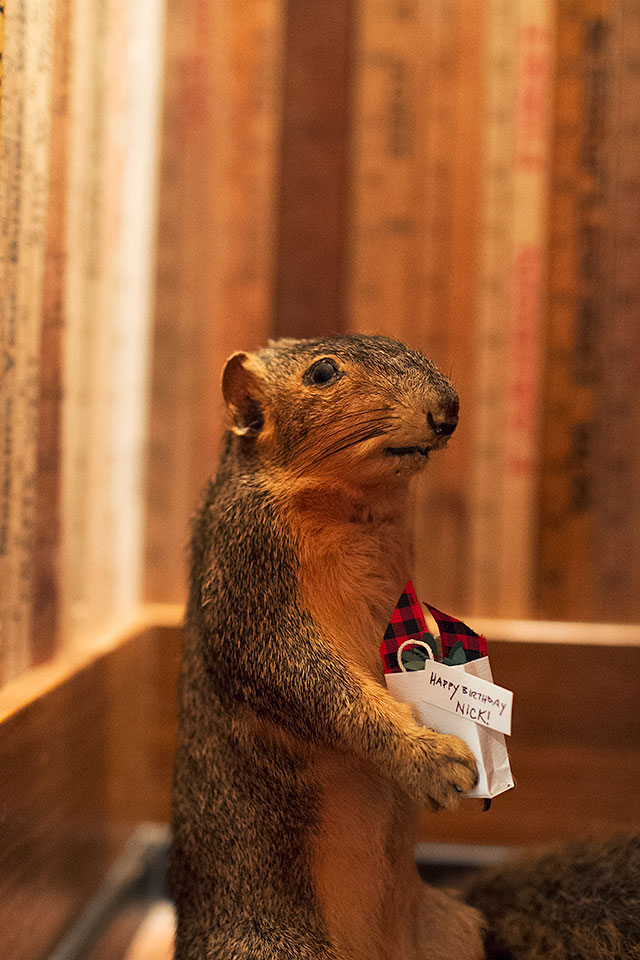Greetings, from the Friendly Squirrel!
