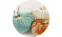 LoveFeast Shop Pumpkins