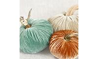 LoveFeast Shop Pumpkins
