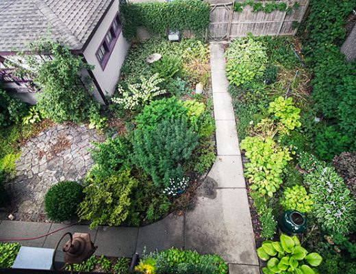 The Garden, When We Moved In