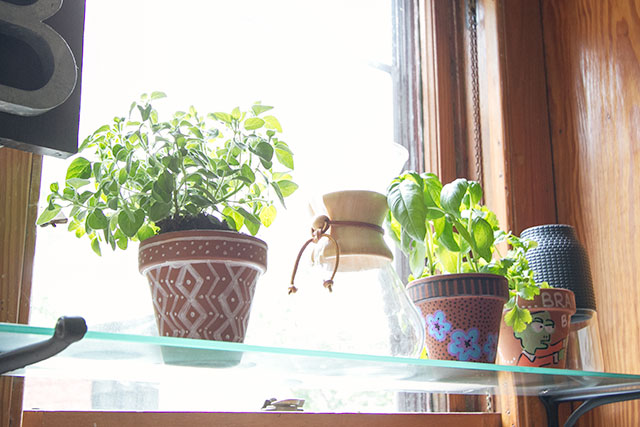 Herbs in the Kitchen Window