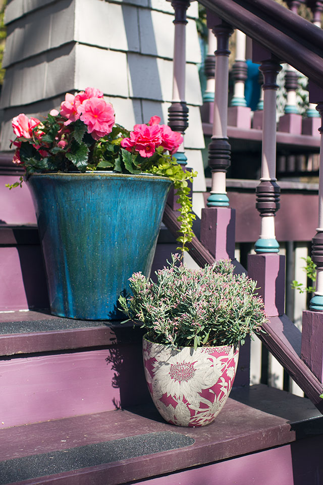 Planters on the Steps