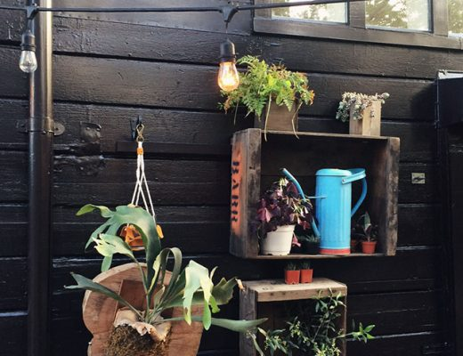 Plants by Lila B. Design at Stable Café, San Francisco
