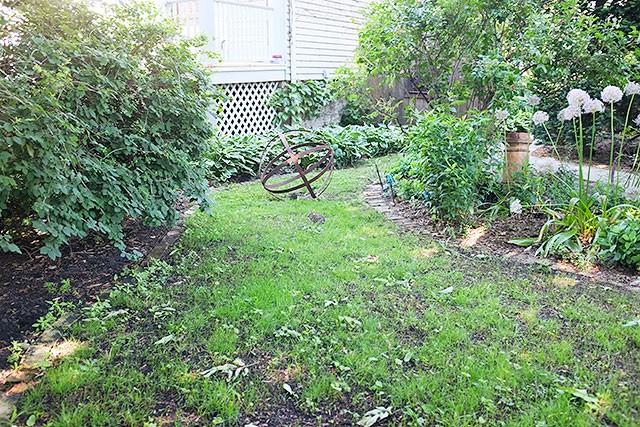 Sparse Lawn