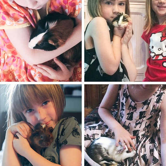 Eleanor with Her Guinea Pigs