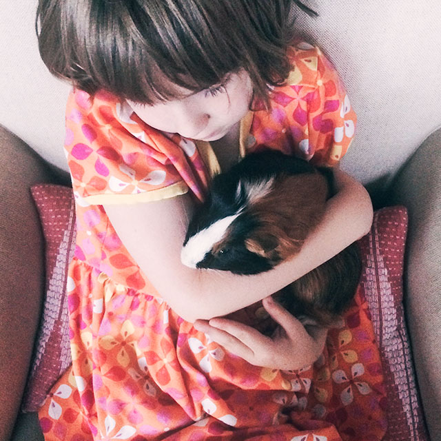Eleanor and Gingerbread, the Guinea Pig