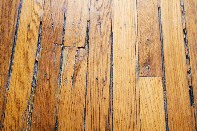 Soft Spot in Wood Flooring