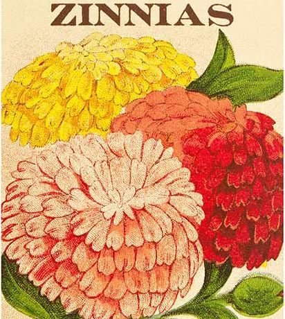 USPS Vintage Seed Packet Stamps - Zinnia