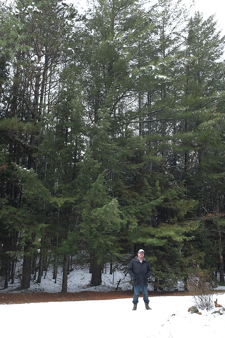 Brandon in the Pines