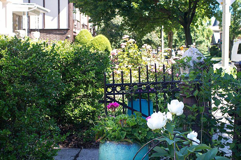 Near the Garden Gate