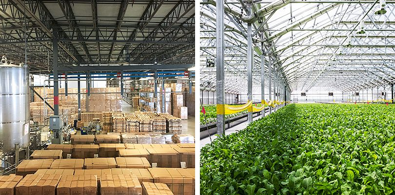 Method's South Side Soapbox is a factory and warehouse below, and a Gotham Greens greenhouse above