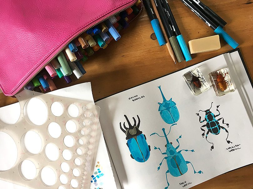 Drawing Inspiration from Insects | Making it Lovely