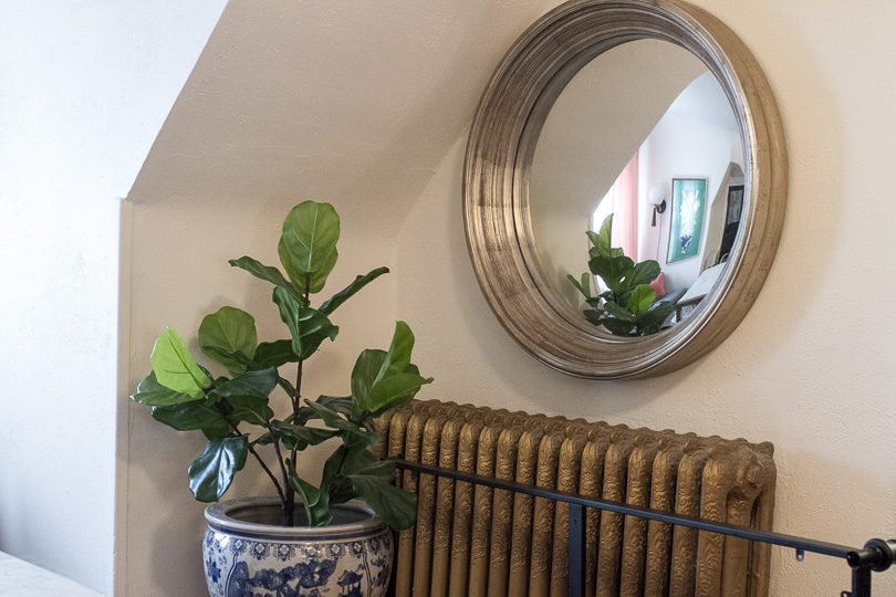 Convex Mirror and Fiddle Leaf Fig in Blue and White Planter