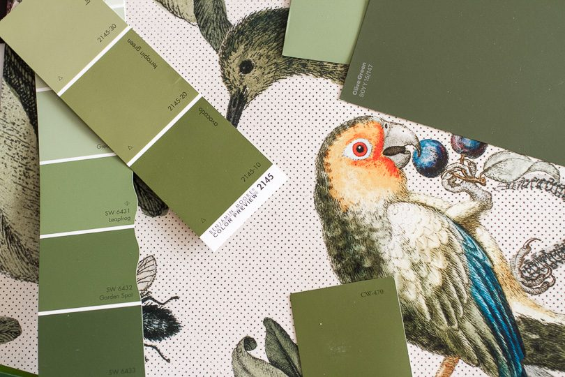 Milton & King Wallpaper, Green Paint Swatches