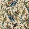Ornithology Wallpaper, Milton & King