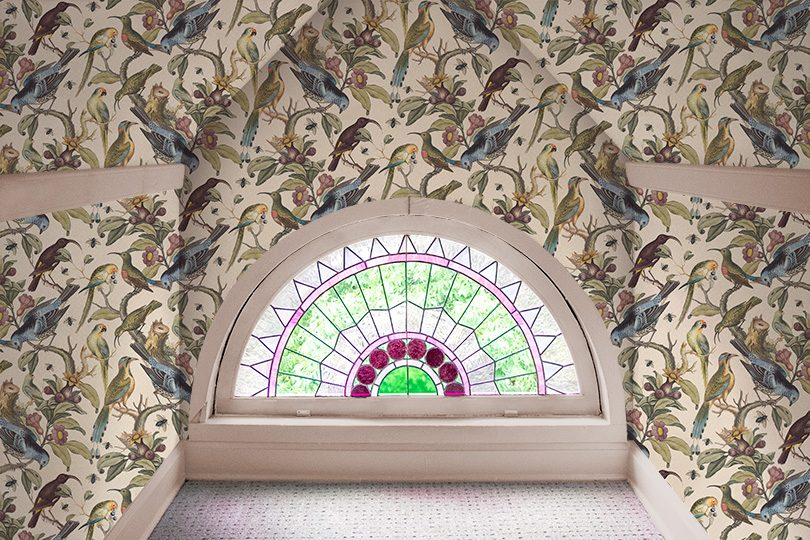 Rainbow Room, Milton & King Ornithology Wallpaper, Stained Glass Window, Pink Painted Trim
