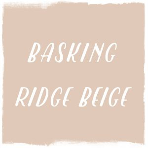 Paint Color: Basking Ridge Beige, Benjamin Moore