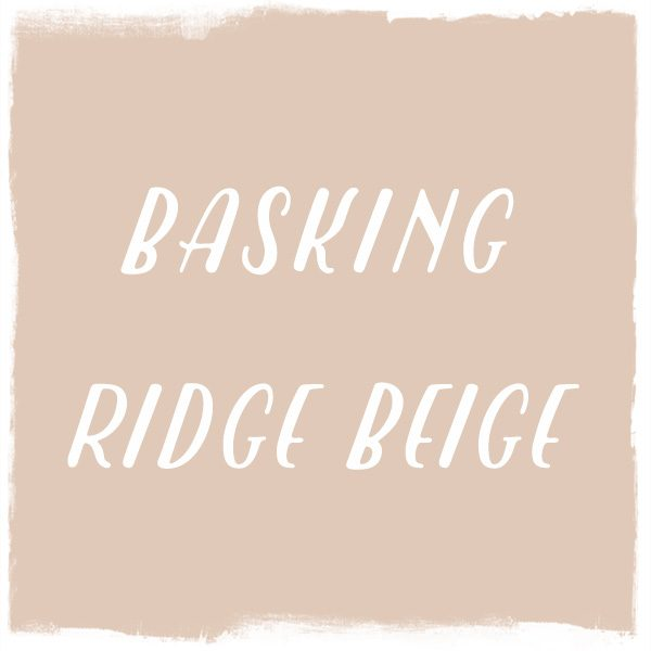 Paint Color: Basking Ridge Beige, Benjamin Moore