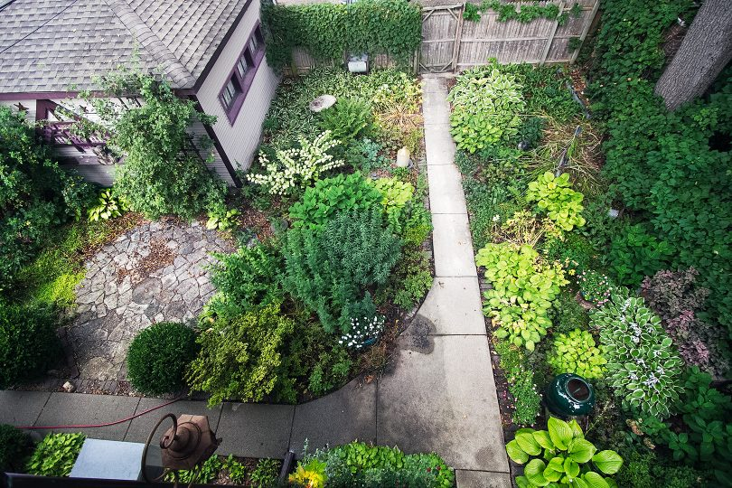 The Backyard Garden, When We Moved In