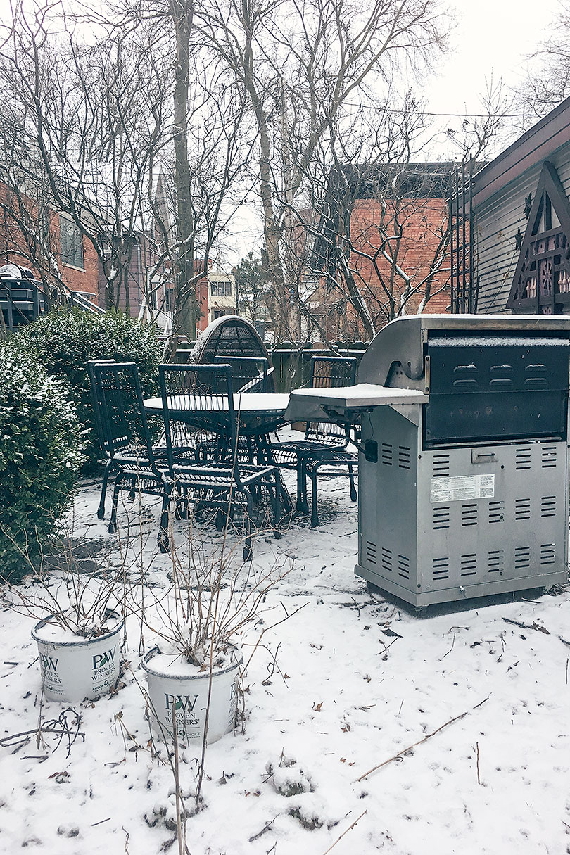 Mid-April Snow in Chicago