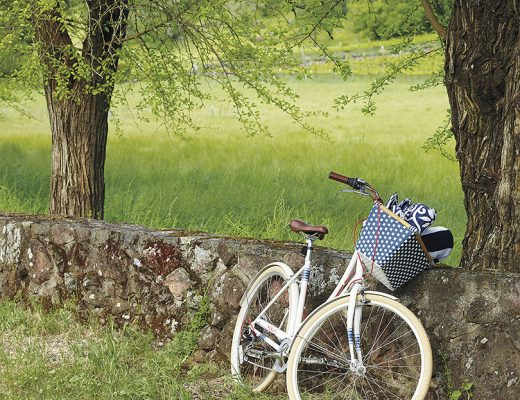 Serena & Lily - Public Bike C7
