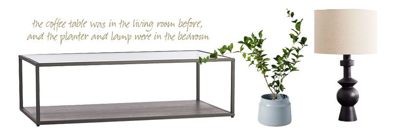 the coffee table, planter, and lamp from before