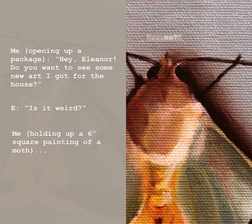 Moth Art: Is It Weird?